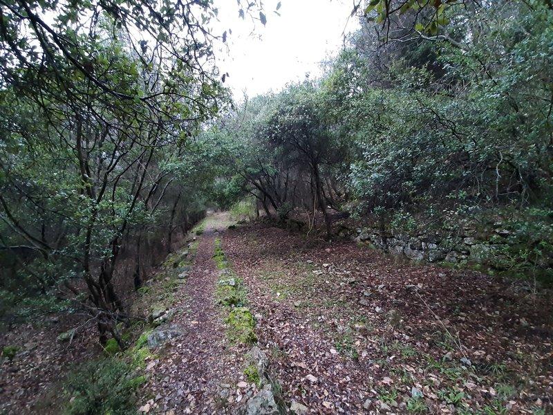 The walkway.