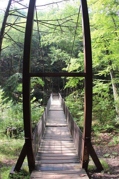 Crossing Great Trough Creek on Suspension Bridge
