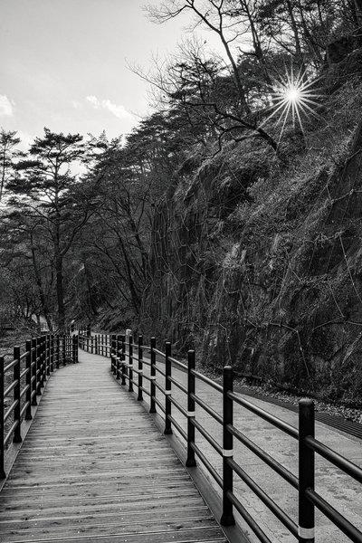 'Natural' environment often found along Korea trails.