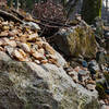 Lots of stacked rocks by the temple stream