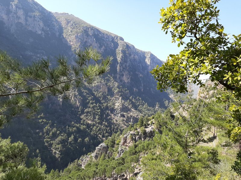Qannoubine Valley from the LMT