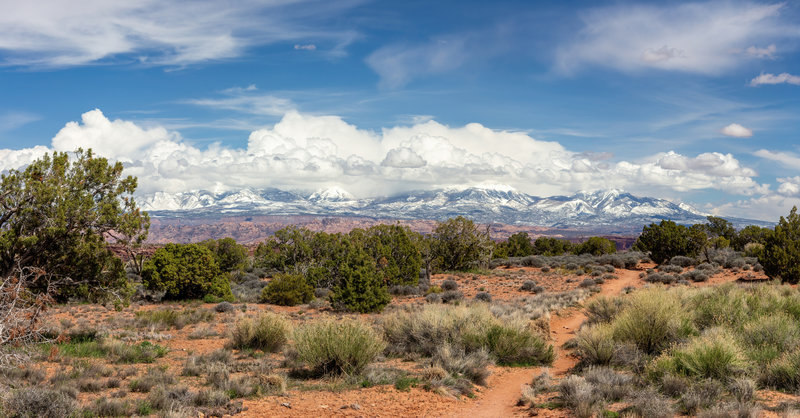 The snow covered La Sal Mountains rise on the horizon as you make your way to the east rim