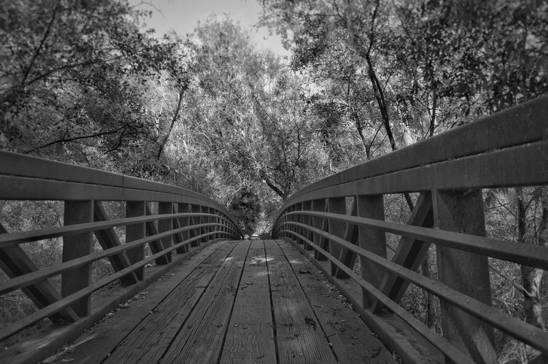 Sunol Regional Wilderness - Sunol, Ca
