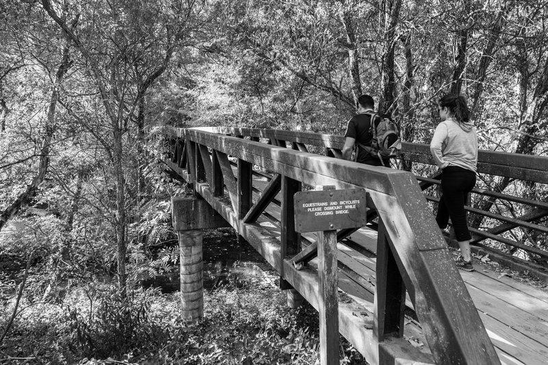 Crossing the Foot Bridge