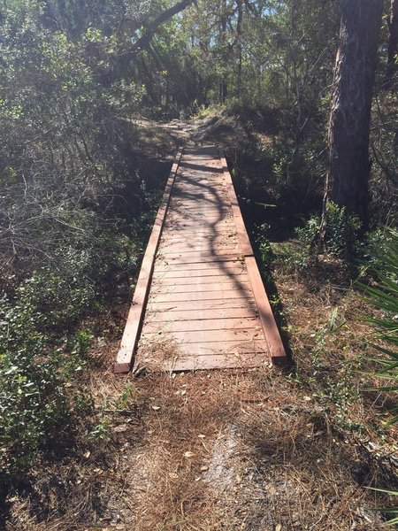 Small bridges aid your passage over certain spots along the BoldlyGo Trail.