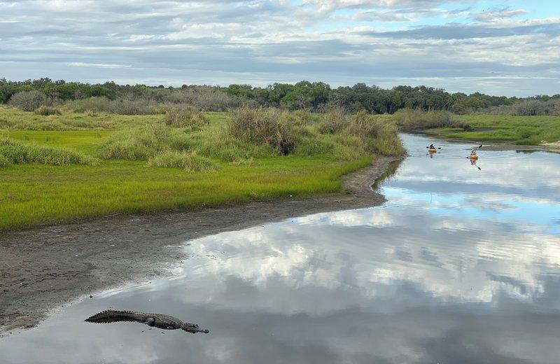 Myakka River State Park, Sarasota, Florida