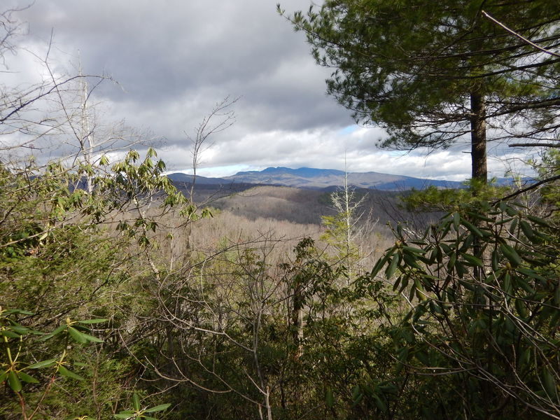 View of Grandfather Mountain from Raider Camp Trail