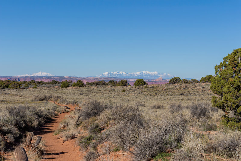 A glimpse of the snow covered Henry Mountains from Murphy Point Trail