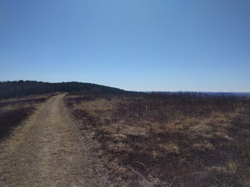 Late winter, start of trail.  Feels on top of the world here.