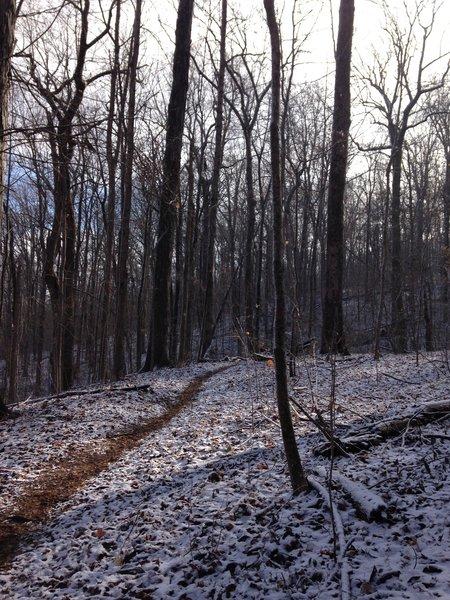 Snow for Mountain Mist