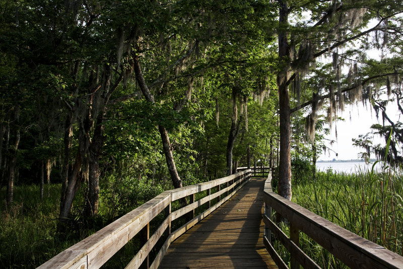 Historic Blakeley State Park located on the Tensaw River is very lush in the summertime.