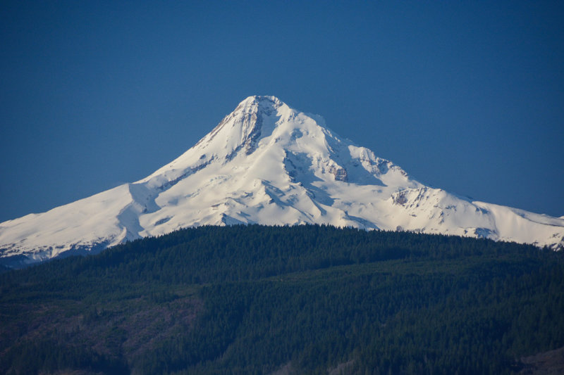 Mount Hood on a clear spring day