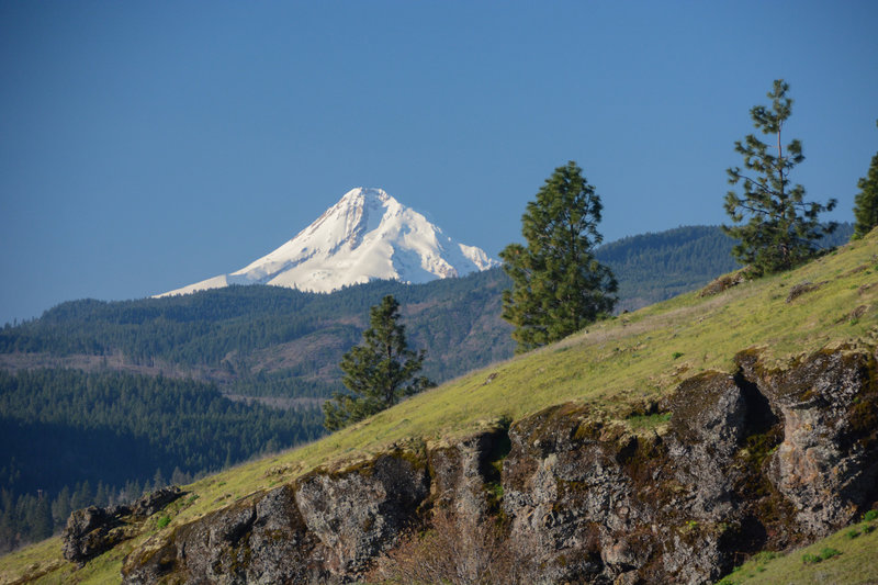 Mount Hood as seen from the top half of Little Maui Trail