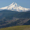 Some hikers and dogs enjoying the Coyote Wall trail and its incredible views of Mt. Hood.