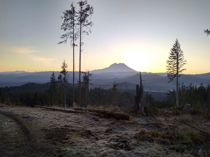View of Mount Rainier from the 2000 Road at sunrise.