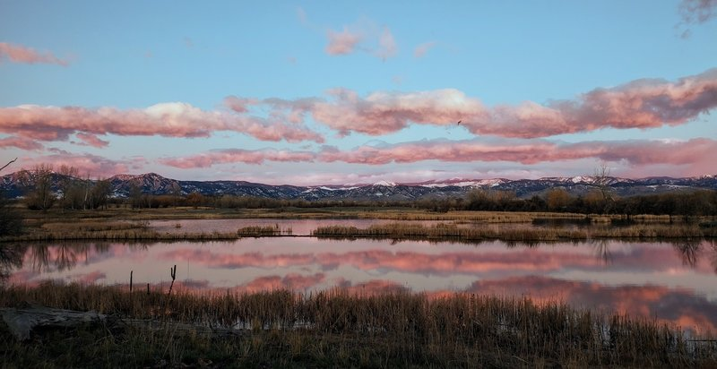 Just before sunrise, looking west from Teller Farm Trail between Valmont and the bridge to the East Boulder Trail.