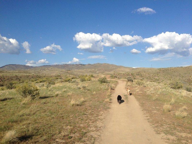 Red Cliffs Trail.