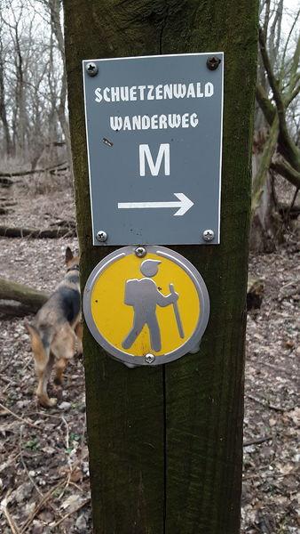 """One of the well marked trails in the Schützenpark """"Mittel-Wanderweg"""""""