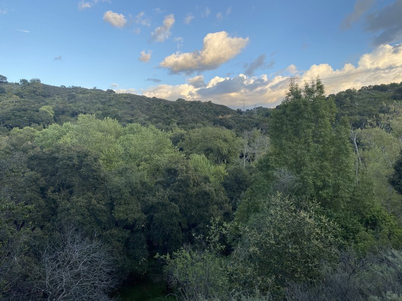 Views of the area between Stevens Creek County Park and Fremont Older Open Space.
