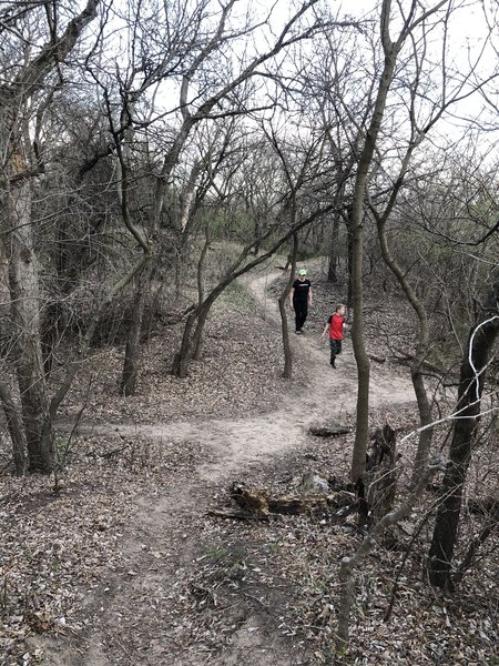Main trail through the park