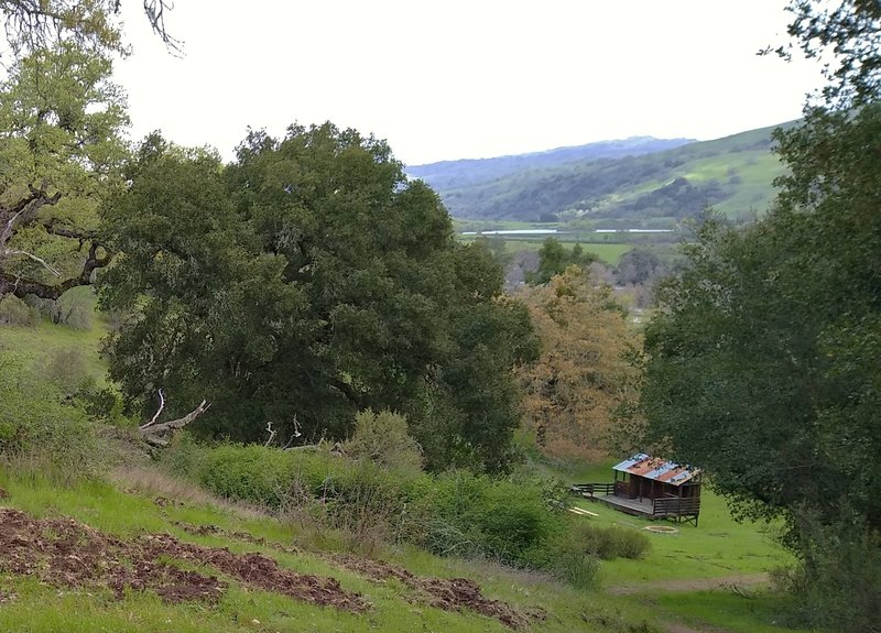 A small rustic amphitheater set in the green hills, is reached by the Amphitheater Trail in Joseph D. Grant County Park.