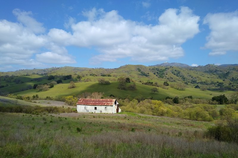 Snell Barn in the Diablo Range hills of Joseph D. Grant County Park. Mt. Hamilton, 4,265 ft., is in the distance toward the right. Lick Observatory can be seen at the top of Mt. Hamilton.