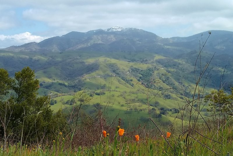 Snow capped Mt. Hamilton, 4,265 ft., along a high ridge of the Diablo Range. In the spring the grass hills turn green and bright orange California Poppies, the state flower, appear everywhere.  Looking northeast from high on Dutch Flat Trail.