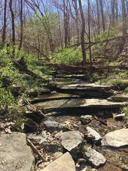 Blowing Springs Loop - low ride creek