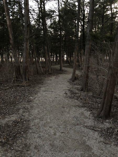 Chipped limestone path