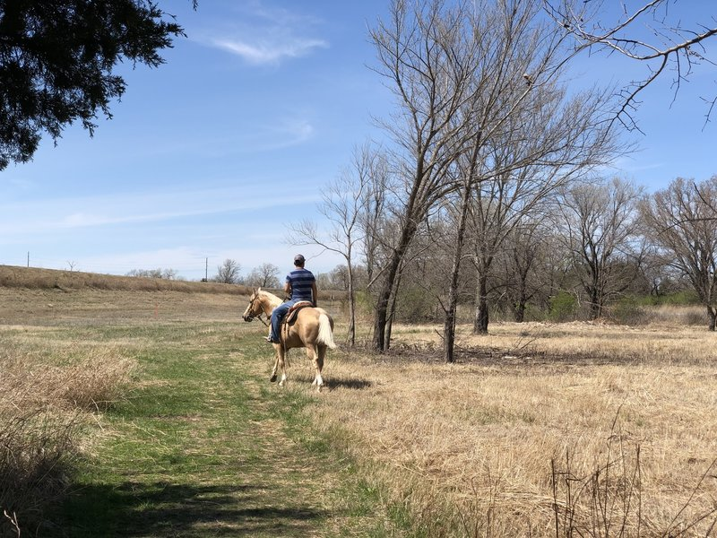 This equestrian rode over to the circular trails and practiced galloping around them
