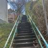 Midway up the section of stairs on Eleanor St.
