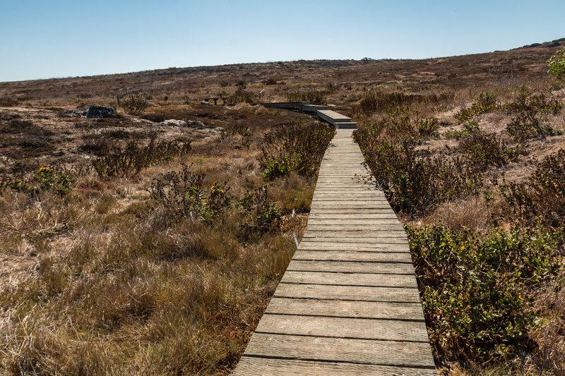 Channel Islands National Park - Anacapa Island