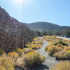 Emigrant Canyon and Wildrose Canyon Roads