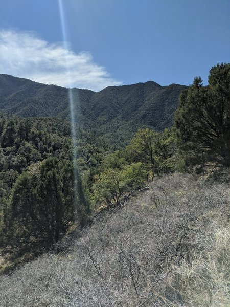Super Trail View