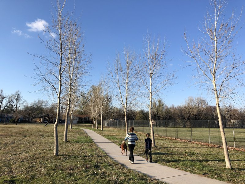 These trees will be awesome in 15 years!