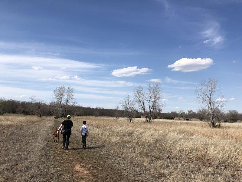 Little bluestem prairie grass everywhere