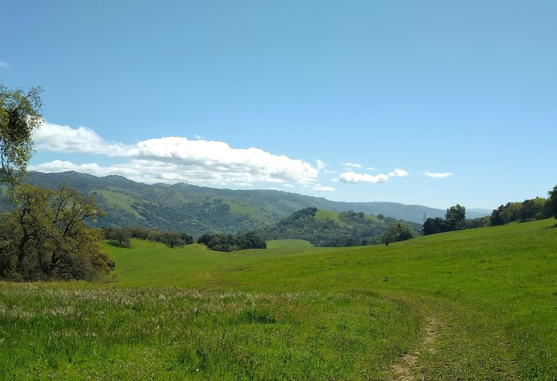 The vast meadows at the southern end of Brush Trail, with the Diablo Range hills extending far into the distance, looking east on Brush Trail on a gorgeous spring day.