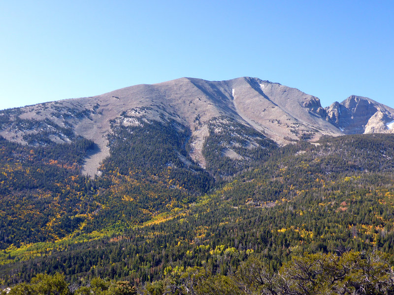 Autumn in Great Basin NP