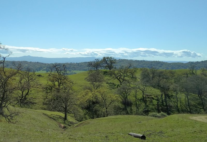 The Santa Cruz Mountain are southwest in the far distance, with Loma Prieta, 3,790 ft., their highest peak, on the left, as Yerba Buena Trail winds through the spring green hills of the Diablo Range.