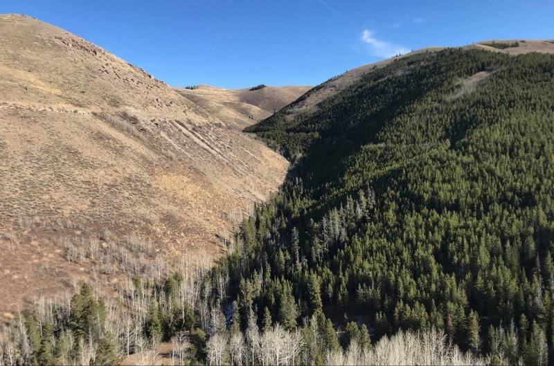 One of the excellent views from the Telephone Canyon Trail