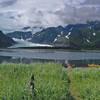 Pederson Lagoon and Glacier