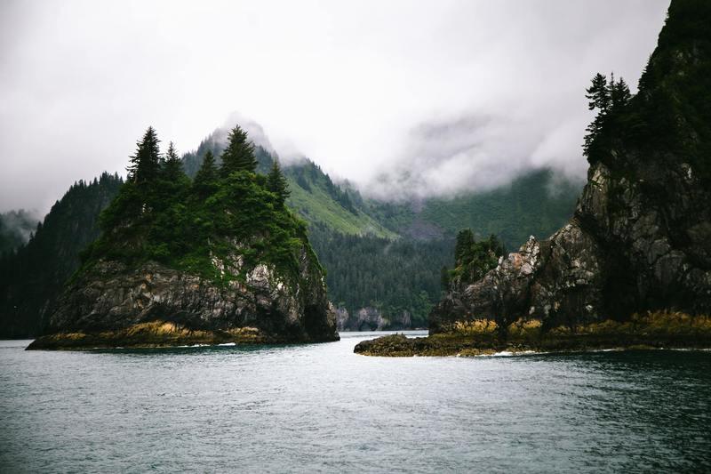 The Shores of Kenai Fjords