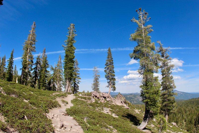Walking on the Kings Creek Trail, Lassen Volcanic