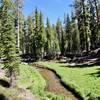 Kings Creek meadows