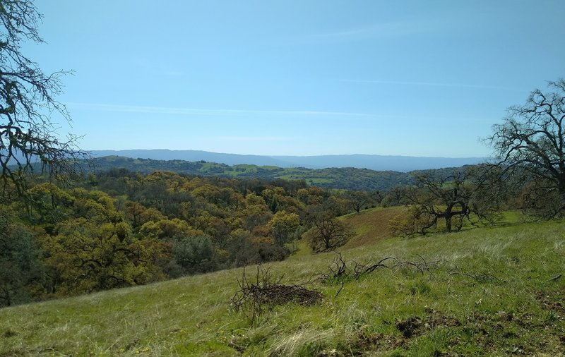 Several creeks start high in the hills around Manzanita Trail. One of these creeks in its wooded valley, is on the left.  In the distance to the southwest are the blue Santa Cruz Mountains.