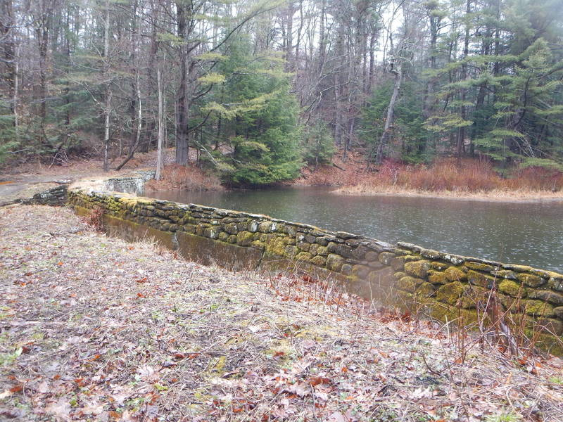 Stone wall on the pond's edge.