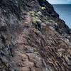 Kalalau Trail - Crawler's Ledge