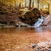 Cascade Falls Trail, Patapsco Valley State Park, Elkridge, Maryland (USA)