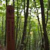 Entering Beaver Basin Wilderness