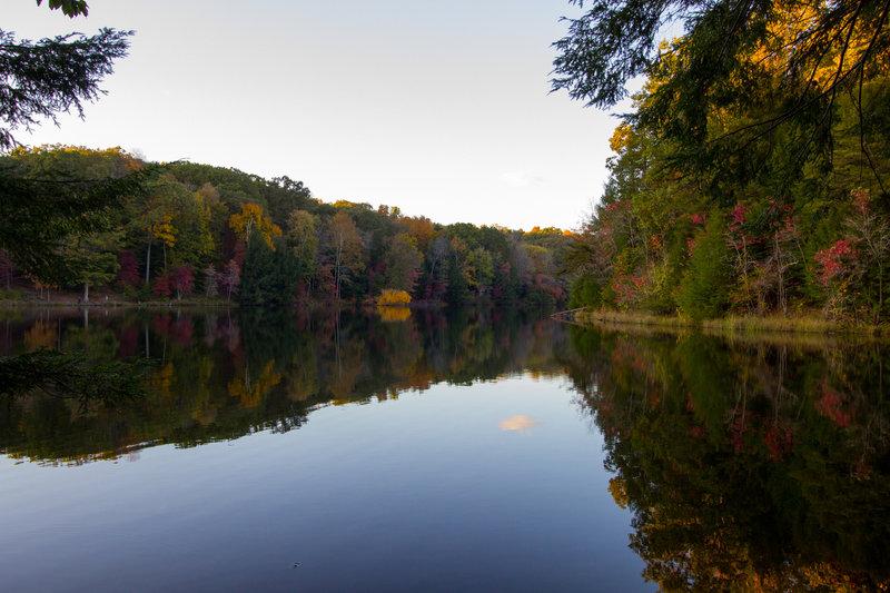 Rose Lake Overlook